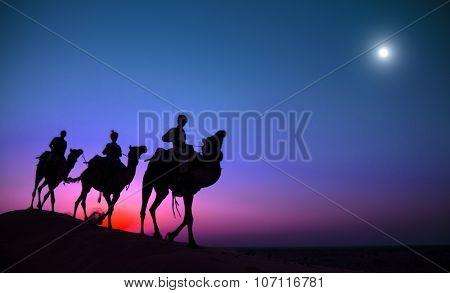 Indigenous Indian Man Riding Through Desert Camel Concept