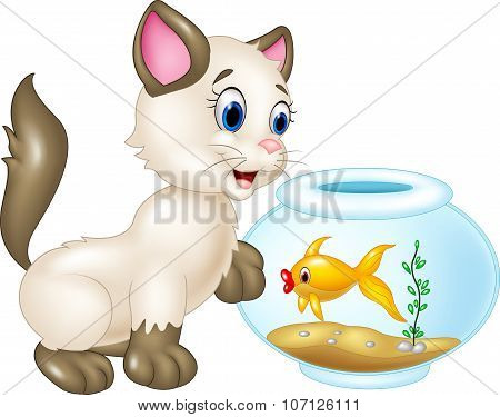Curious cat playing with swimming fish isolated on white background
