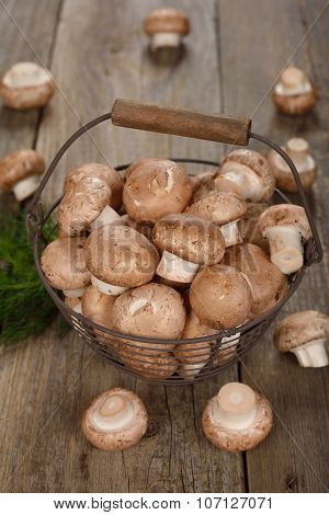 Royal Mushrooms In A Basket