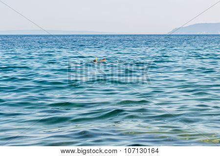 Snorkelers In The Ocean