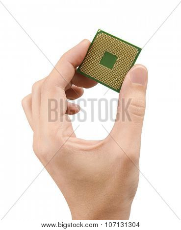 Computer processors CPU in hand, isolated on white background