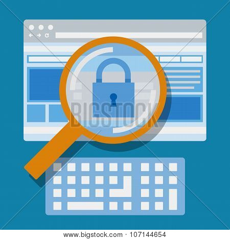 Magnifying website, Internet security