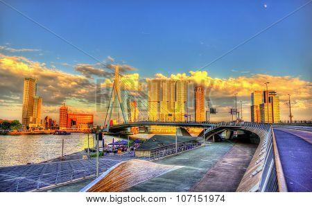Erasmus Bridge In Rotterdam - Netherlands