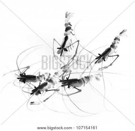 Chinese traditional ink painting, shrimp