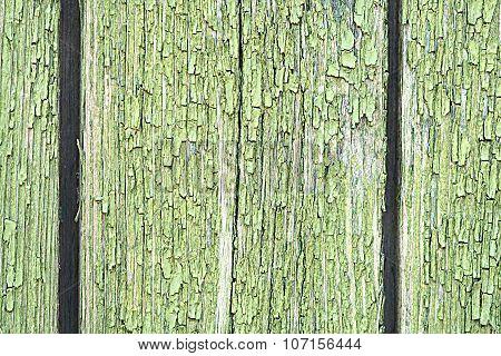Dark Green Wood. Natural Texture Background