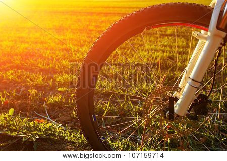 Mountain bicycle at sunny evening