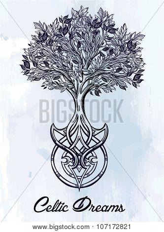 Celtic tree of life illustration.