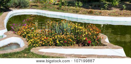 Flowers  Lawn