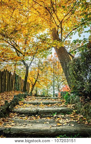 Turin (torino) Parco Del Valentino In Autumn Colors