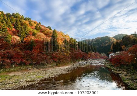 Colorful Autumn Leaf And River With Blue Sky In Korankei, Japan