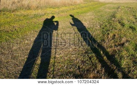 Two Shadows On The Meadow