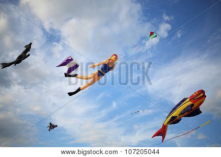 Kites in the shape of marine animals and diver are flying in the sky