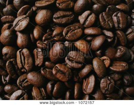 Coffee Beans Close