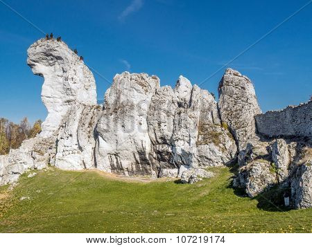 Lime rock outlier formation one of many that can be found in the Krakow-Czestochowa Upland also known as Polish Jurasic Highland, Poland