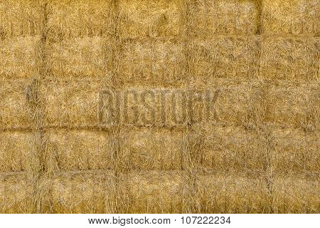 Stacked square bales of straw