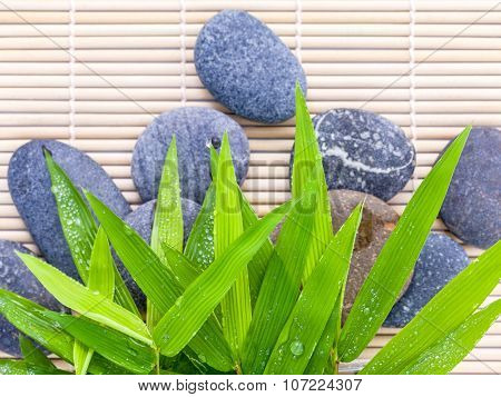 The Stones Spa Treatment Scene On Bamboo Background And Bamboo Leaves With Raindrop Zen Like Concept