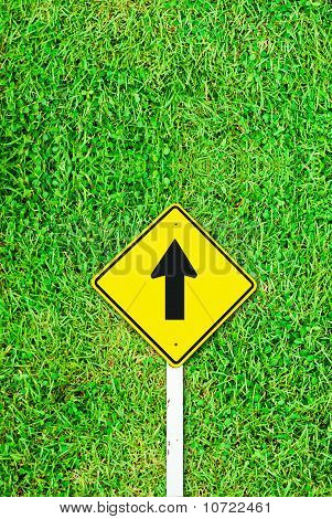 Go Ahead Traffic Sign On Grass Field