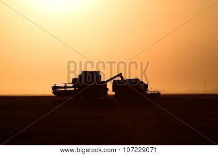 Harvesting by Combines at Sunset