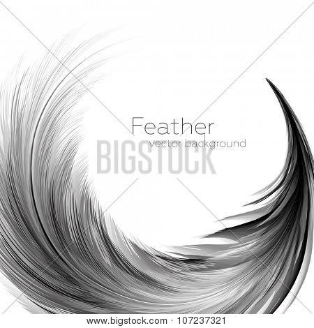 Vector Illustration of Feather | EPS10 Card Design