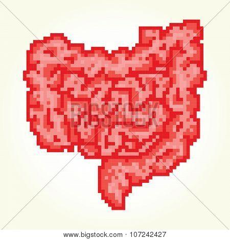 Pixel art guts isolated vector illustration