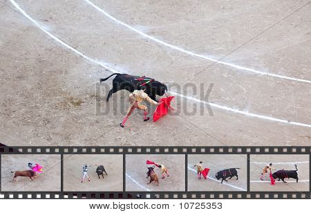 Bullfight - The One Of The Most Controversial Events In The World