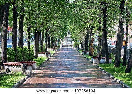 Beautiful Alley With Green Trees And Benches In Summer Sunny City