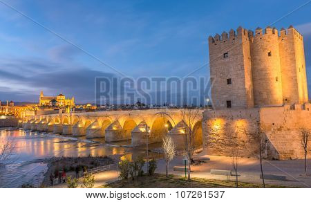 Cordoba, Spain, old town seen from the river at sunset.