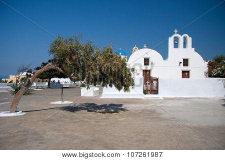 Littel white church and olive tree in Oia, Santorini