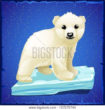 Little polar bear on an ice floe