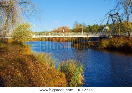 Lake With Bridge In A White Poplar Park In Late Autumn