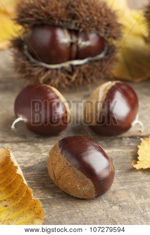 Heap of whole raw sweet chestnuts