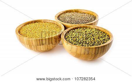 Fragrant Coriander, Vibrant Yellow Mustard, Flavorful Cumin