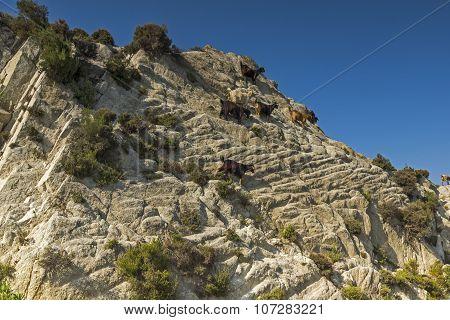 Sithonia Landscape, Chalkidiki, Sithonia, Central Macedonia