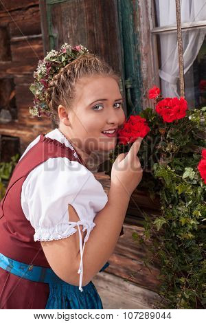 Bavarian girl in dirndl smelling a geranium.