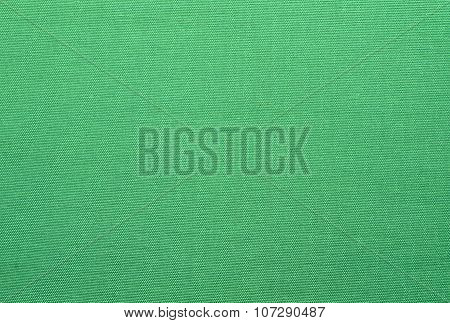 a light green canvas background and texture