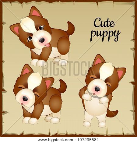 Three cute puppies, expressions of emotions