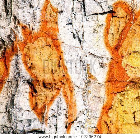 Lanzarote Spain  Texture Of A Broke