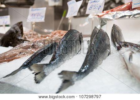 Fish Stand 3