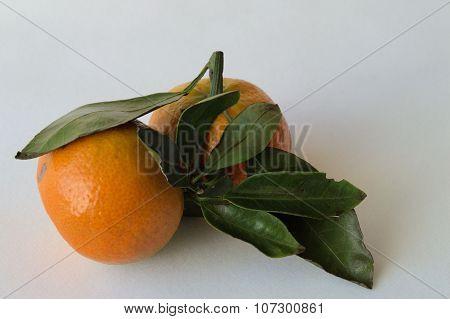 Mandarins.