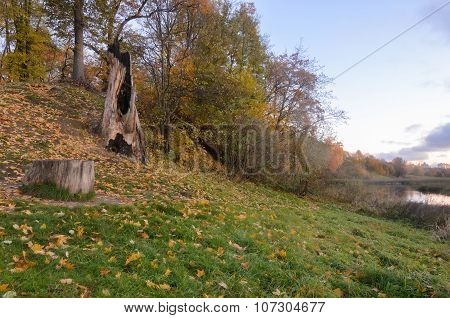 Beautiful Scene In Autumn Park