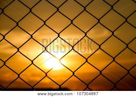 Mesh Fence With The Sunset
