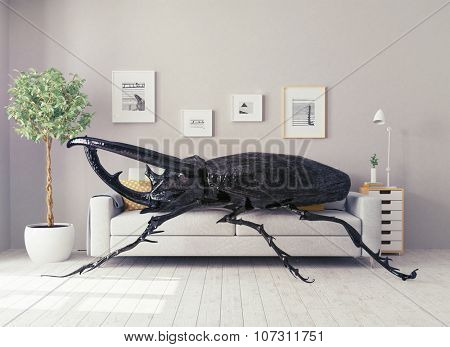 the beetle in the living room, lying on the sofa. 3d concept