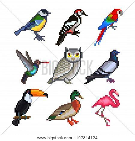 Pixel Birds For Games Icons Vector Set