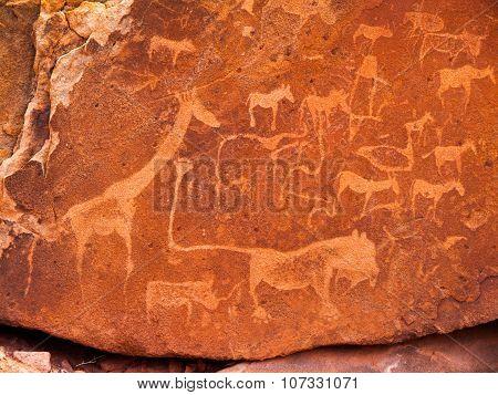 Prehistoric Bushman engravings at Twyfelfontein in Namibia