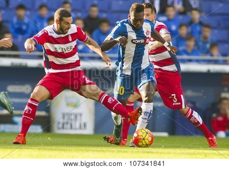 BARCELONA - NOV, 1: David Lomban(L) of Granada CF and Felipe Caicedo(R) of RCD Espanyol fight during a Spanish League match at the Power8 stadium on November 1 2015 in Barcelona Spain