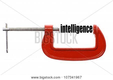 Compressed Intelligence