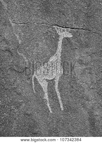 Giraffe engraving in Twyfelfontein