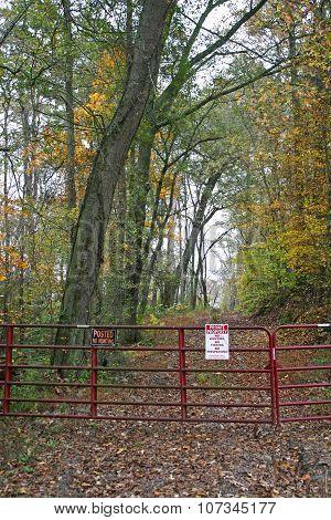 Gated Lane in Autumn (vertical)