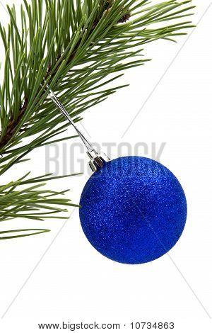 filial de pinheiros com Bijuteria de Natal azul