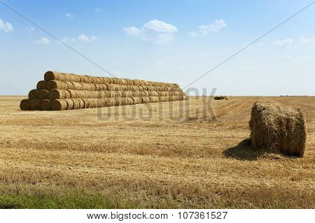 Stack of straw . summer